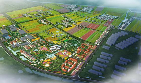 """长安花卉小镇:将种子种在长安 开出""""花花世界"""""""