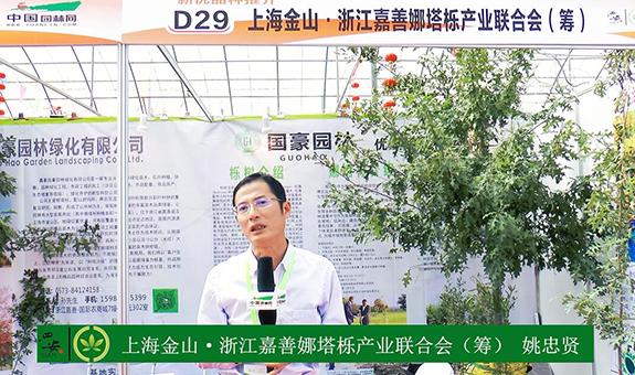 2018中国长兴花木大会采访娜塔栎产业姚忠贤