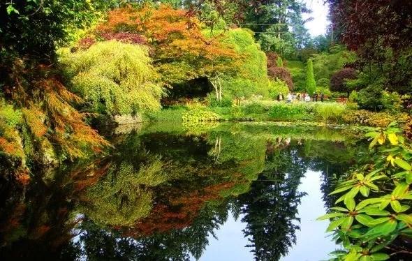 例如,专家经常举加拿大布查特花园这个世界最美花园的例子,可是他们