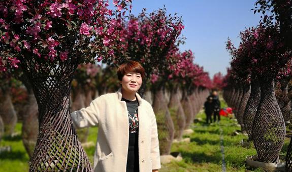 世标的植物花瓶美不美?背后的工艺和创新才叫绝!