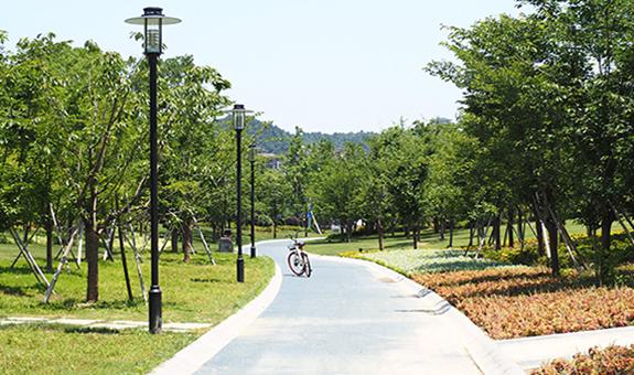 【项目观摩】2017杭州市优秀园林绿化工程项目