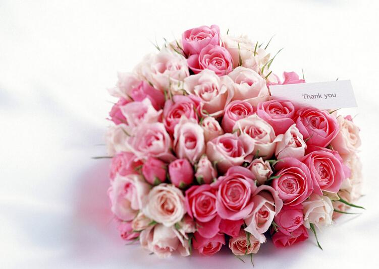玫瑰花束(资料图)