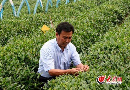 """苏庆亮:""""亿元村""""里的""""穷支书"""" 村庄绿化率达40.63%"""