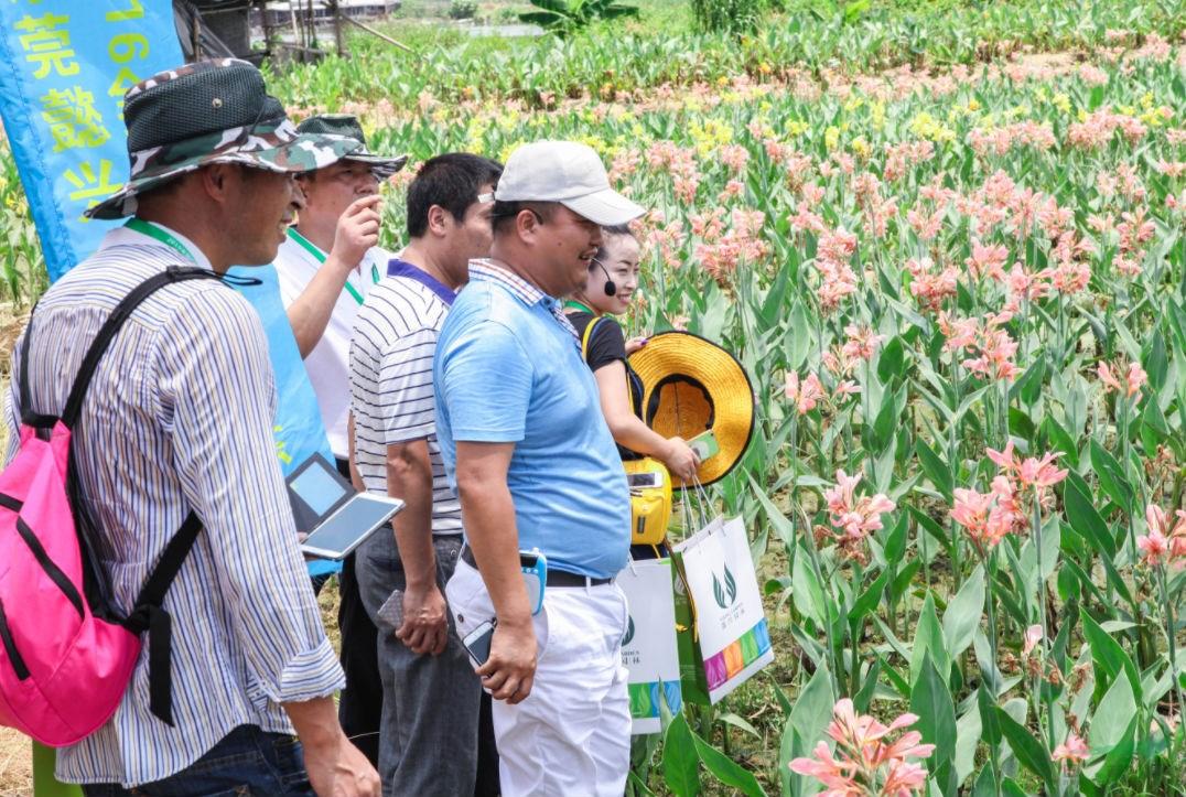 懿兴水生植物百日争量创优活动暨企业产品标准发布会即将举办