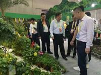 繁花迎嘉宾 芬芳香两岸  第二十一届海峡两岸花卉博览会精彩开幕