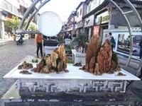 云南通海县打造盆景艺术主题街区