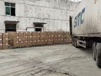 南阳月季基地首批出口月季种苗启运发往韩国