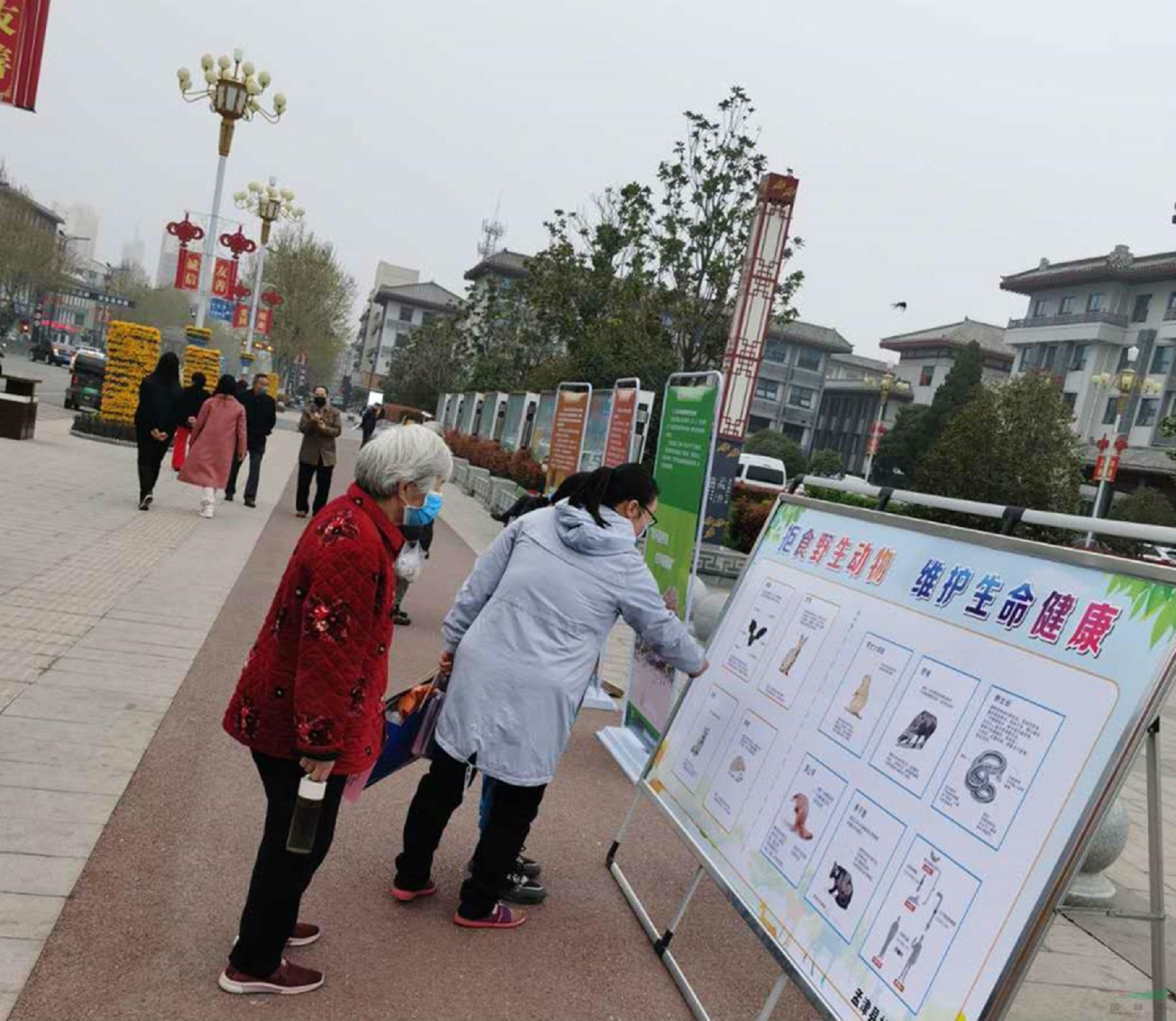 """河南孟津县开展""""保护野生动物・绘就生态家园""""主题宣传活动"""