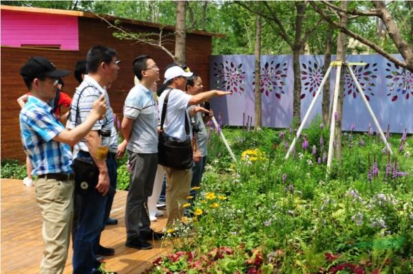 中国花境迎来良好时代机遇 行业发展要走中国特色的可持续之路