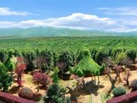 探索福建园林:将苗木花卉做到规模化、标准化、商业化...不只要思考,更要实践!
