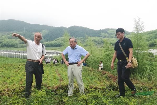 农业农村部专家咨询委员会专家顾益康教授提出美丽经济新概念