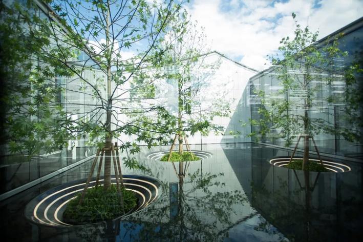 首届中国植物景观设计论坛暨2021植物配置与花境设计研学班将在杭州举办
