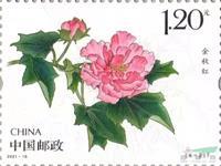 成都市花《木芙蓉》特种邮票今天发行