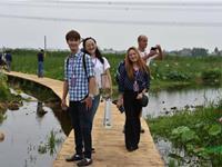 第35届全国荷花展览景观小品开心网五月色公开招标