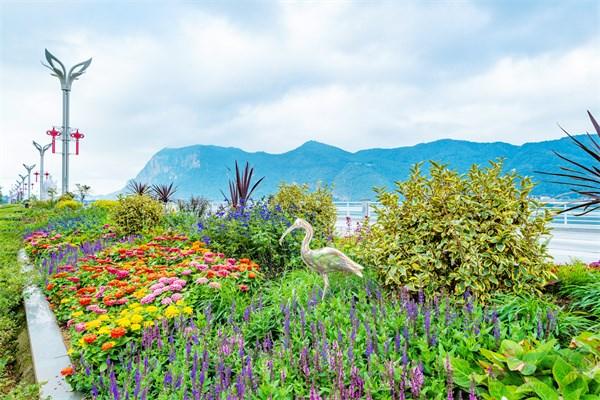 赴春城花境之约 赏昆明美丽之景 中国花境公益大讲堂将首次在昆举办