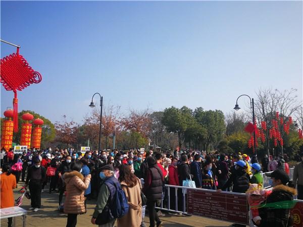 武汉东湖梅园:800年梅祖宗迎春绽放