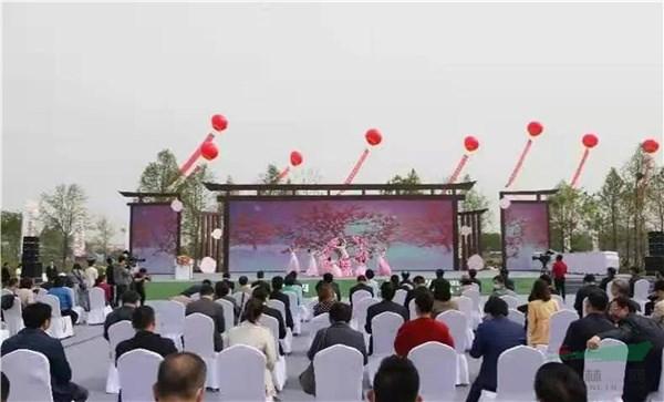 第十一届中国月季展在泗阳开幕