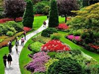 合肥植物园:布查特花园式绿毯花境添靓景