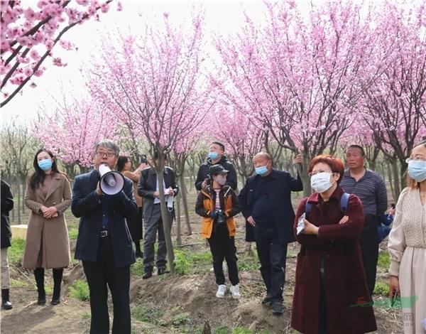 抗寒梅花产业发展及园林应用研讨会在江苏新沂召开
