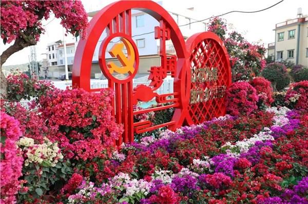 漳州三角梅:产业发展势如破竹创新产品花开全国