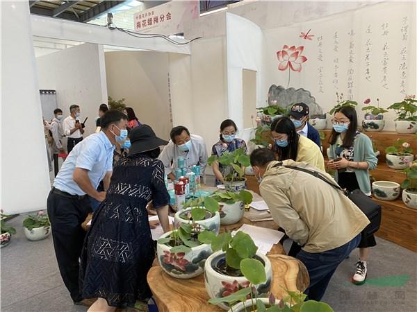 62盆精品碗莲同台比美 全国碗莲栽培技术竞赛在上海崇明成功举办