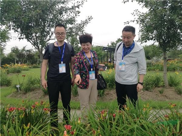 大咖云集 共谋发展 第二届全国萱草文化、育种与应用研讨会在沪召开