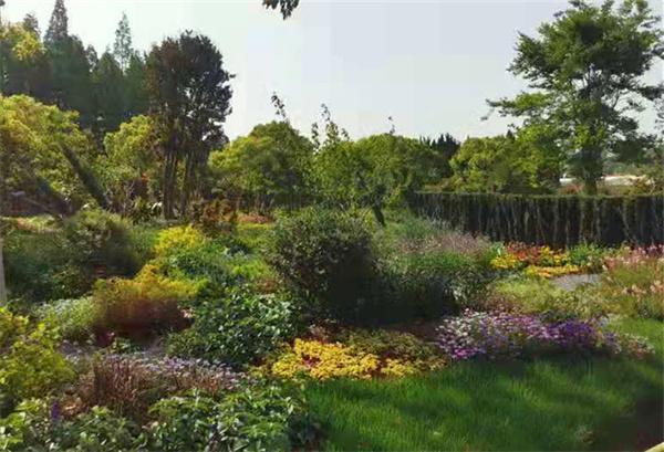首届中国国际花境大赛作品:《飞花月令》彰显中国园林诗情画意